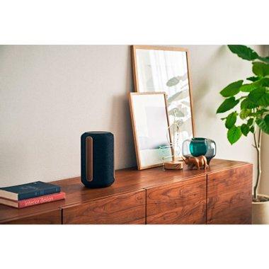 Аудио система SONY SRS-RA3000B