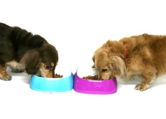 Купа за храна или вода за куче Ferplast Glam L 1.2 л съд купичка