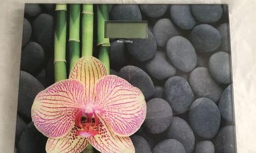 Електронен кантар Wenko 21368100 стъклен дигитален